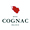 logo_bnic_web_30